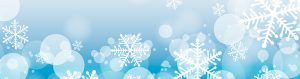 Snowflake_Banner